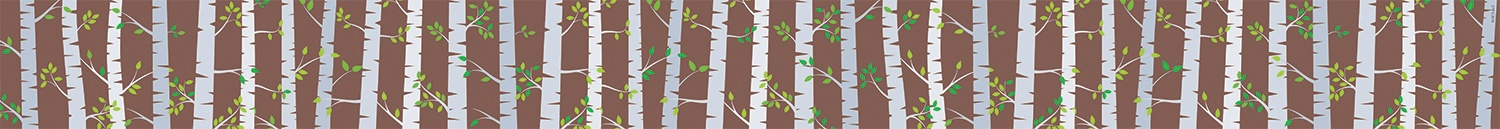 Birch Trees Border