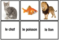 Les Animaux Flash Cards