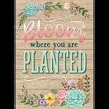 Rustic Bloom Bloom Where You Are Planted Positive Poster